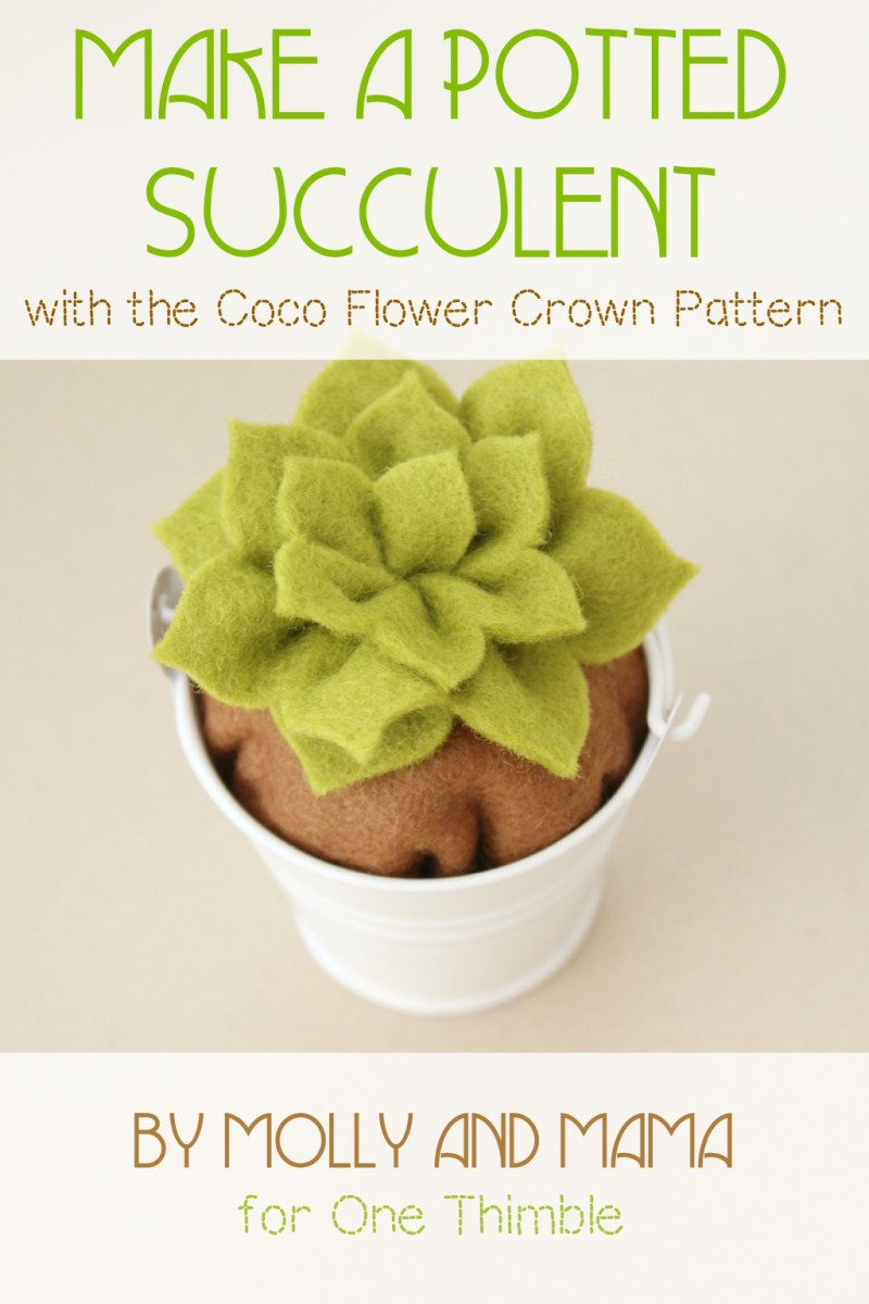 Potted Succulent Pattern Hack